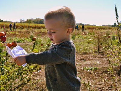 Jovens Agricultores – Abriu novo período de candidaturas